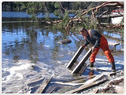 27/04/2008 Помимо разлившеегося дизельного топлива, в акватории было много наплывного мусора от нефтебазы.
